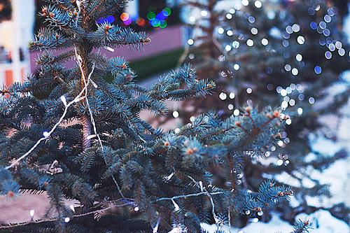 christmas_2015_B